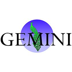 GEMINI CORPORATION N.V.