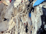 Expanded polystyrene recycling: EPS/XPS
