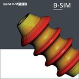 B SIM
