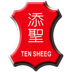 Ten Sheeg Machinery Co., Ltd.
