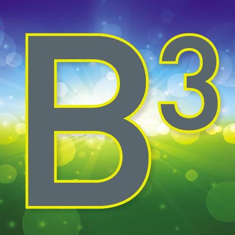 BBB 480