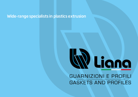 LIANA Company Profile ENG 021 19122018 0910 (mail web)