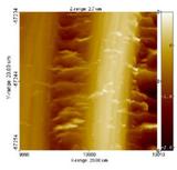 Nanolith al microscopio 300x286